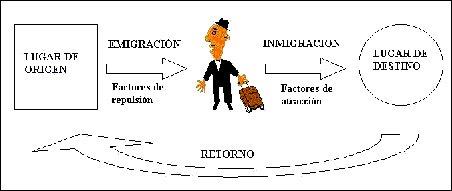 Gráfico 8.